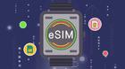 中国联通eSIM一号双终端业务将在全国开通试验