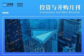 Intellectual property issues in mergers and acquisitions confronting Chinese companies