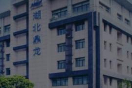 鼎龙股份:上半年CMP抛光垫订单量明显增长 已成为部分晶圆厂客户一供