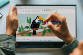 设计师修正图像以预测Windows 11的画图程序界面