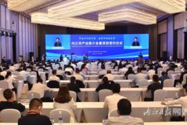 四川内江新签约43个产业项目,涉及微电子半导体硅棒等