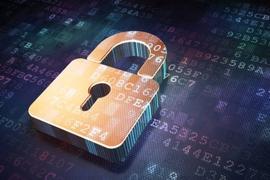 为中国IoT铸盾的安全IP